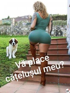 Vă place? - Viral Pe Internet Funny Pictures, Funny Pics, Bodycon Dress, Humor, Memes, Places, Sexy, Internet, Fashion