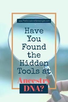 Genealogy Websites, Genealogy Humor, Family Genealogy, Family Tree Research, Genealogy Search, Dna Results, Ancestry Dna, My Family History, Genealogy Organization