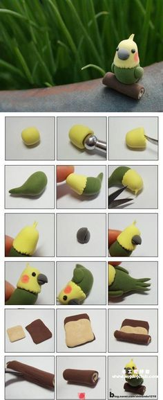 Cute Bird Picture Tutorial