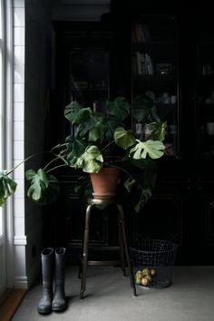 10 Examples of Inspired Spring Greenery (Apartment Dark Interiors, Beautiful Interiors, Interior Plants, Interior And Exterior, Indoor Garden, Indoor Plants, Decoration Design, Green Life, Green Plants