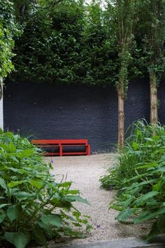 balck/dark grey wall, pleached trees combo