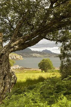 Scotland view - ~~ No wonder Robert Burns wrote so much poetry. Don't you just LOVE the scenery?