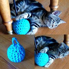 Balle pour chat en Trapilho bleu turquoise