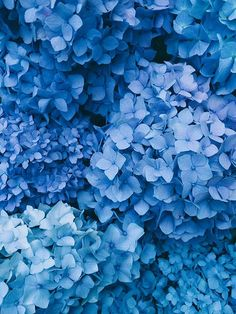 blue, 7/10 | by sidebysam