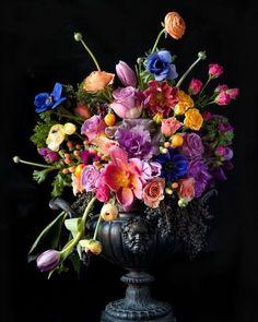 Arrangement & Urn, Bloom by Anuschka. I absolutely love flowers on a black background ~ this is breathtaking! Art Floral, Deco Floral, Floral Flowers, Bright Flowers, Floral Design, Black Flowers, Purple Roses, Silk Flowers, Arrangements Ikebana