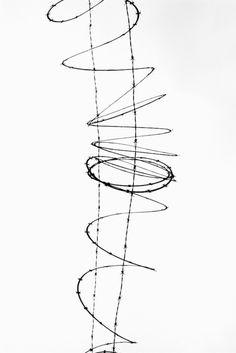 barbwire by graeme mitchell    (via creatio-ex-materia)
