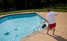 Professional pool maintenance & cleaning in Long Beach, CA, 90808 provided by Sunrise Pool Service. Pool cleaning & maintenance at affordable rates. Swimming Pool Repair, Swimming Pool Maintenance, Swimming Pools, Pool Cleaning Service, Pool Service, Cleaning Services, Portable Pool Vacuum, Vegas Pools, Free Pool