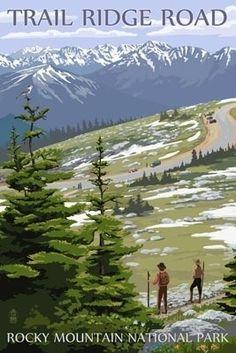Trail Ridge Road - Rocky Mountain National Park - Lantern Press Poster