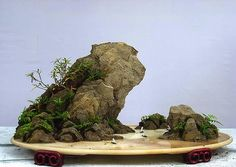 2009 Landscape Bonsai Exhibition in Chongqing-4 | Thank you … | Flickr