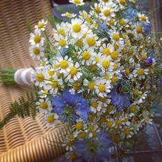 ramos de novias con flores silvestres tanacetum httpwwwbezzia