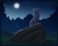 warriors cats images | Warrior Cats Forever Bluestar 2