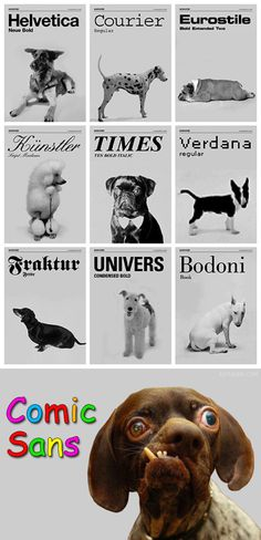 Type dogs.