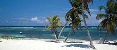 East End Beach - EAST END, CAYMAN ISLANDS