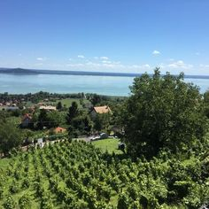 "No this is not Italy nor is it France. It's actually Lake Balaton in #Hungary. Great #wine area. Surprisingly #lovely not what we expected too see when we took a #vacation of our own in #Budapest. The lake is also the ""host"" for the electronic music festival Balaton Sound. #welovetravel #contourairse #resa #pin #europe #vacation #wine #reseblogg"