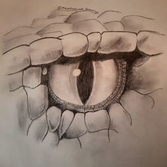 Check out my art on instagram @theartnetwork.sharanya Snake eye