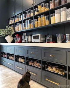 Kitchen Pantry Design, Kitchen Organization Pantry, Kitchen Decor, Pantry Ideas, Pantry Storage, Kitchen Items, Open Pantry, Pantry Inspiration, Pantry Room
