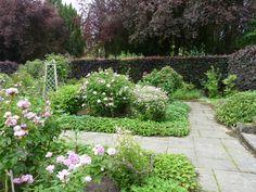 le jardin par passion... - Page 2 - le jardin par passion...