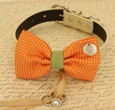 Orange Dog Bow Tie,Bow attached to dog collar, Dog ring bearer, Orange and green Wedding accessory, Proposal, Dog collar, Dog lovers