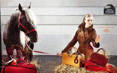 www.horsealot.com, the equestrian social network for riders & horse lovers   Equestrian Lifestyle : Hermès ad campaign fall-winter 2006 by Camilla Akrans.