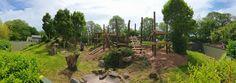Jersey Zoo (Photo: Jersey Zoo Facebook account) Gorilla enclosure