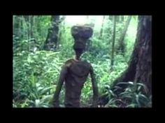 UFO Sighting Alien Abduction Caught on Tape Doomsday NEW UFO Video 2013 - Horror
