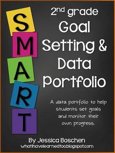 What i have learned: Goal Setting & Data Portfolio