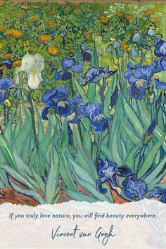 A Closer Look at Vincent van Gogh's Irises