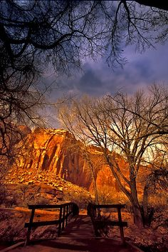 Capitol Reef National Park is a National Park in Torrey. Plan your road trip to Capitol Reef National Park in UT with Roadtrippers. Capitol Reef National Park, Us National Parks, Places To Travel, Places To Visit, Vacation Places, Road Trip, Grand Parc, Sea To Shining Sea, State Parks