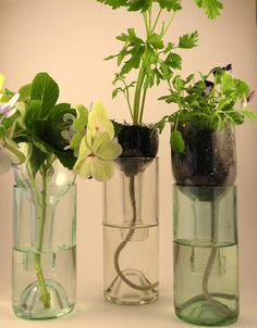 Recycled Reused Repurposed Blooming Bottles by pieceofminedesigns, $63.00