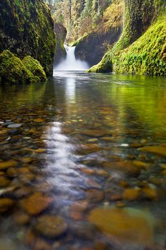 Punchbowl Falls - Columbia River Gorge, Oregon - I totally forgot about these falls. Perfection!