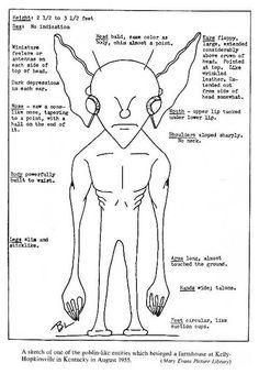36 types dextraterrestres 36 types alien extraterrestre et