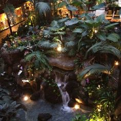 Polynesian Resort - On my list of resorts to stay at :)