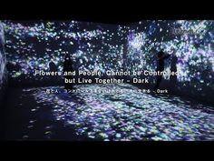 Flowers and People, Cannot be Controlled but Live Together – Dark | teamLab / チームラボ