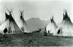 Blackfoot Camp, (Aamsskaapipikani)