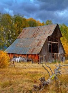 Searching for red and mostly finding gold colors. I liked the way the wood was worn on this old barn. Farm Barn, Old Farm, Vie Simple, Barn Pictures, Country Barns, Country Roads, Country Life, Country Living, Barn Art