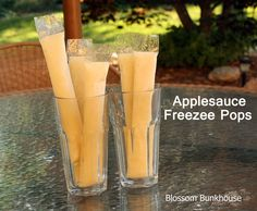 DIY Applesauce Freezee Pops - a healthy and fun snack from www.blossombunkhouse.com