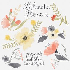 Check out Delicate flowers by Webvilla on Creative Market