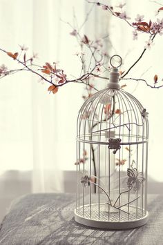 ways to decorate with a bird cage