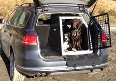 TransK9/B22 in VW Passat - great solution for transporting your dogs and carrying luggage! www.transk9.com