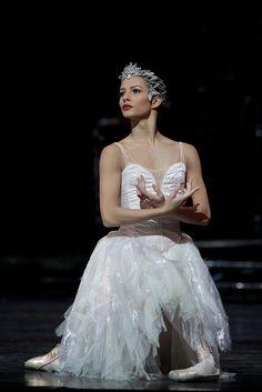 Ballerina Francesca Hayward - in Swan in Swan Lake - Royal Ballet Ballet Art, Ballet Dancers, Ballerinas, The Royal Ballet, Swan Lake Costumes, Francesca Hayward, Swan Lake Ballet, Ballet Russe, Ballet Images