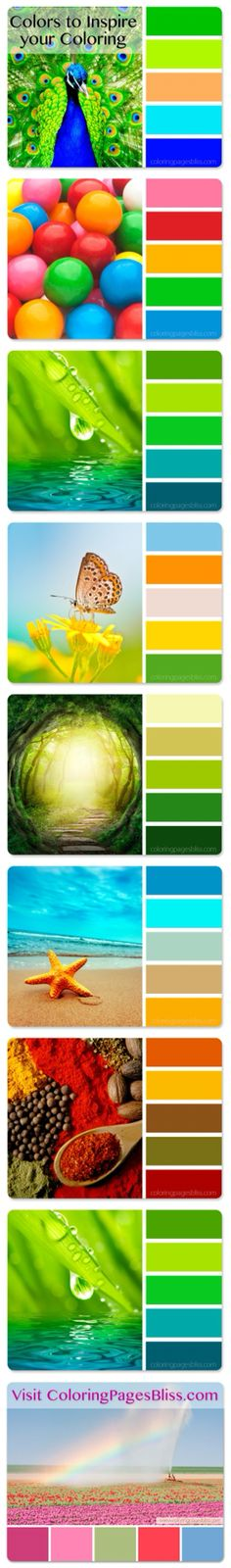 Nature inspired color palettes to provide you with artistic color combinations to try on your next coloring page. Visit Coloring Pages Bliss for more beautiful color palettes and lovely printable coloring pages.