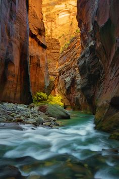 The Narrows…Again by ~parkflavor.  Such an amazing through water hike. This is one to explore at various times of the year.