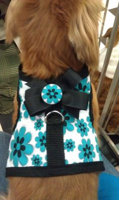 Teal flower cute dog or puppy harness with bow by lilmissykris, $20.00