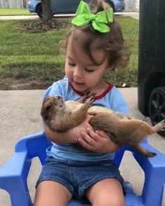 Cute Funny Baby Videos, Cute Funny Babies, Cute Animal Videos, Funny Kids, Funny Cute, Cute Little Animals, Cute Funny Animals, Cute Cats, Happy Animals