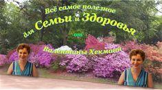 На детской площадке с детьми и внуками  24.07.16