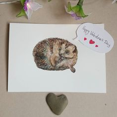 Hope you all have a lovely day with lots of cuddles  #valentines #hedgehog #hedgehoglove #wildlifeart #winsorandnewton