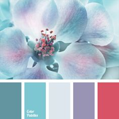 Bright and delicate palette for a wedding decor for a winter wedding. It suits ideally this purpose because it can help to make a real snowy fairy tale.. 어떤 한가지 강하게 그리고 자연스럽게 강조할때 자홍색을
