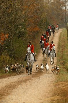 As soon as I get my own horse (and trailer) I'm joining the local hunt!