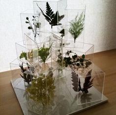 Model Concept By Sou Fujimoto