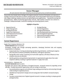 Example of a resume for a senior manager with experience as Account Manager and Global Sales Executive and B. in Business Sales Resume Examples, Resume Objective Examples, Resume Skills, Resume Tips, Executive Resume Template, Registered Nurse Resume, Project Manager Resume, Engineering Resume, Job Cover Letter